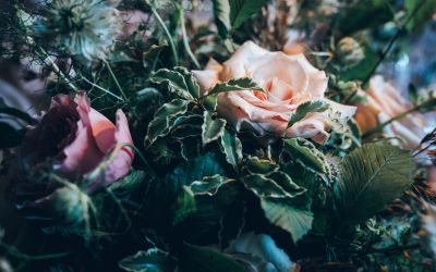 Wedding Supplier Recommendations from Wedding Suppliers In London and Devon