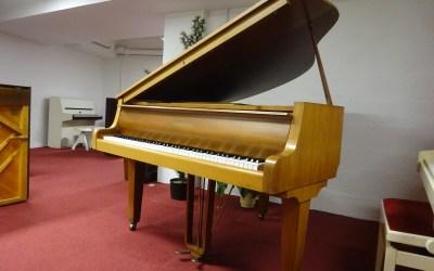 Piano Crapaud ZIMMERMANN