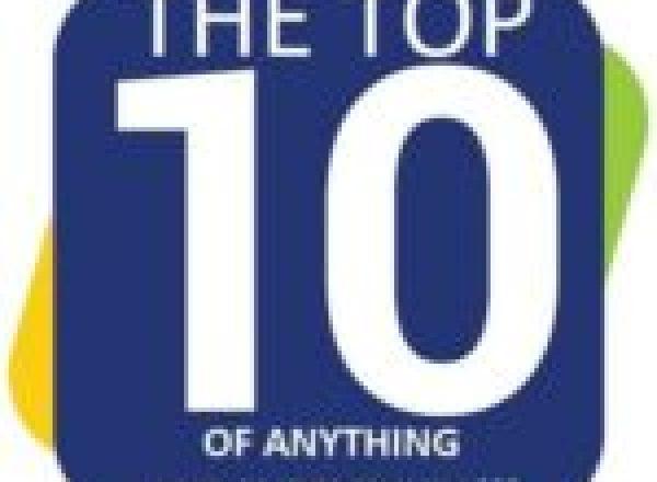 Shark Theme Park Bench