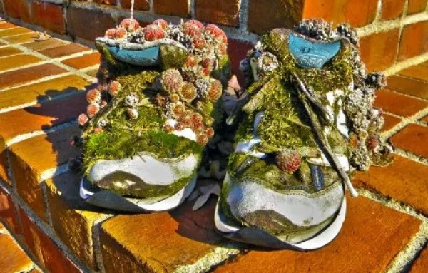Old trainers turned into shoe planter