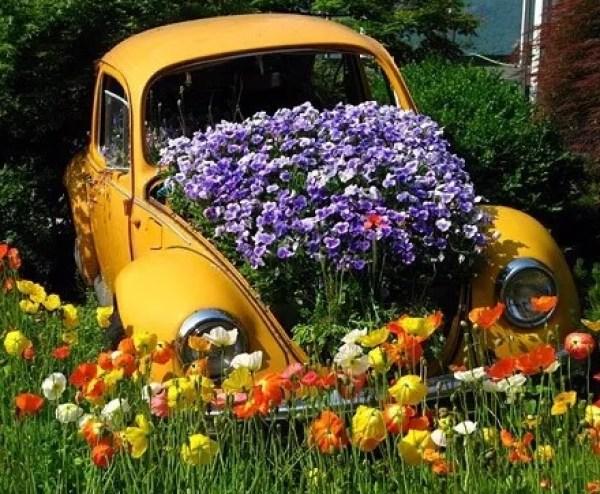 Yellow Volkswagen Beetle Covered in Flowers