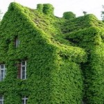 Ten Amazing Houses Covered in Something Strange