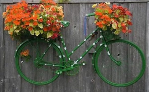 Bicycle Repurposed as a Garden Display