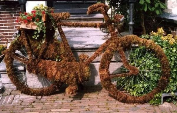 Bicycle Repurposed as Moss Display