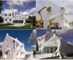 Top 10 Images of Houses Covered in Something