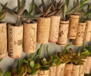 Ten Amazing Ways to Reuse, Repurpose and Recycle Bottle Corks