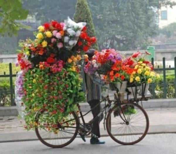 Bicycle Overloaded With Flowers