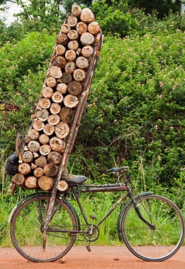 Bicycle Overloaded With Logs