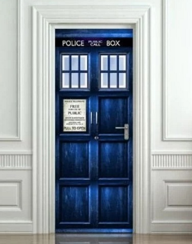 TARDIS Inspired Door