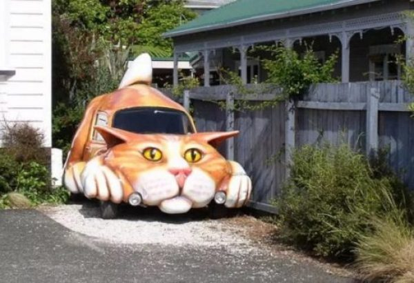 Cat car waiting to attack