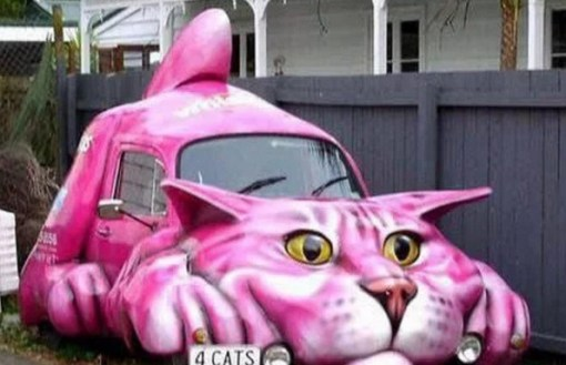The Pink cat car