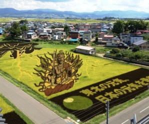 Top 10 Examples of Rice Paddy Tanbo Art