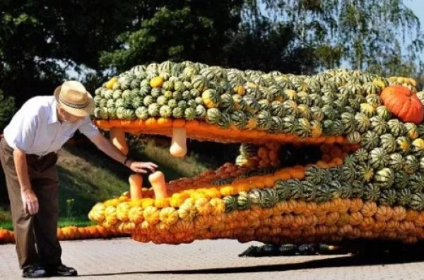 Crocodile art installation made of pumpkins