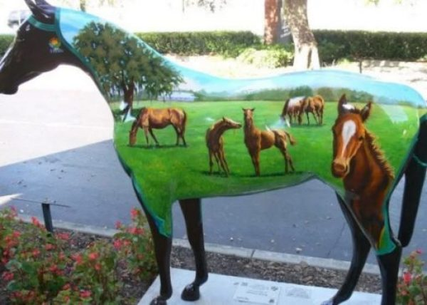 Horse Fever - Ocala Painted Horses