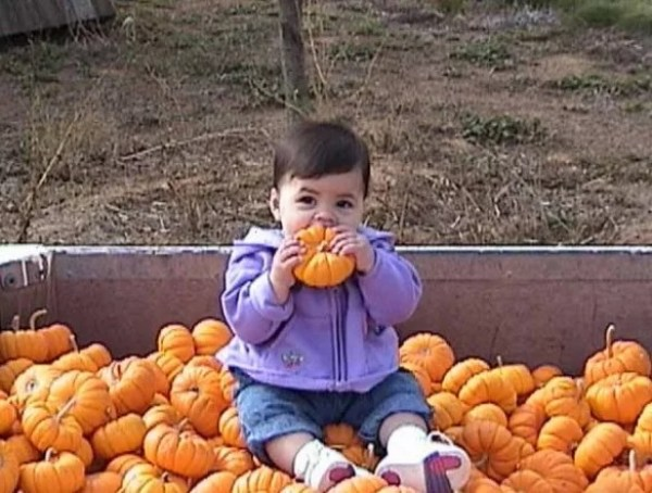 Things to do With Pumpkins After Halloween: Eat it