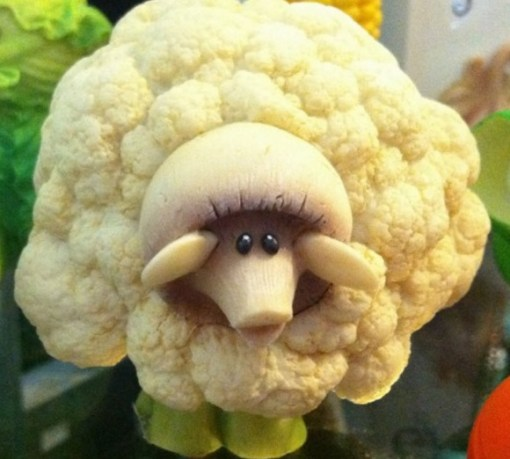 Sheep Inspired Cauliflower