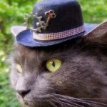 Top 10 Unusual and Amazing Steampunk Hats