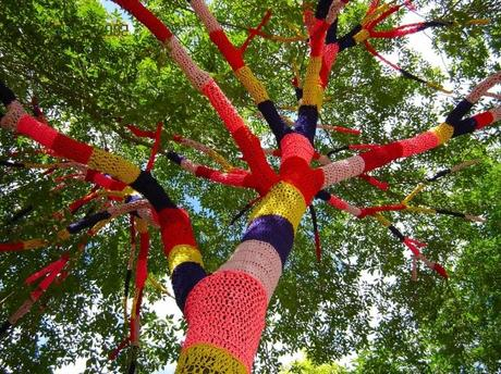 Tree covered in knitting