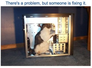 catswhocode.com Error Page