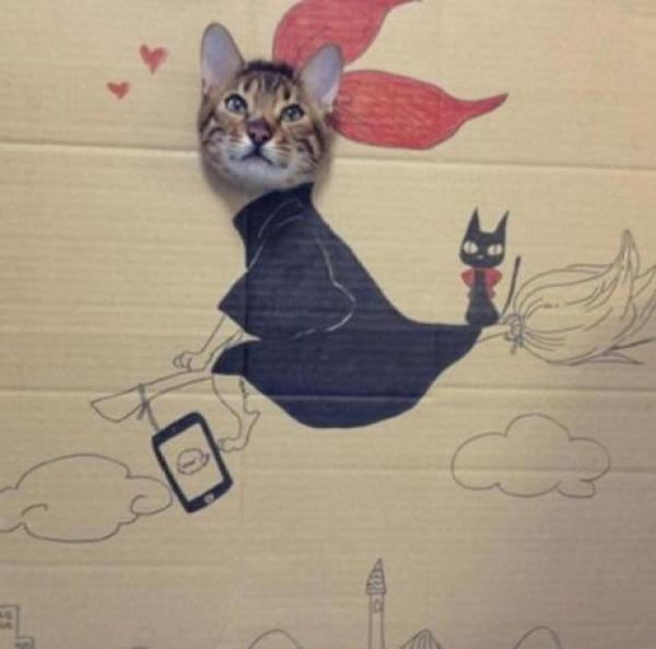 Cat art in the style of a Witch