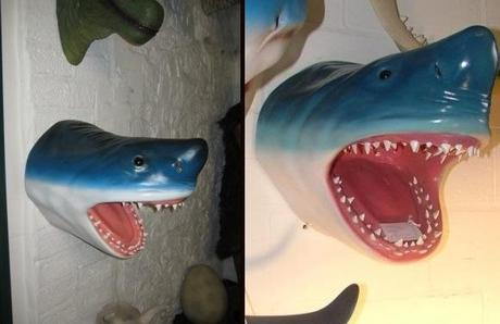 Wall Mounted Shark