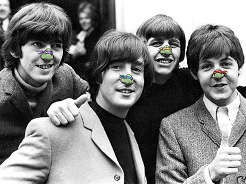 Top 10 Celebrity Ninja Turtle Noses