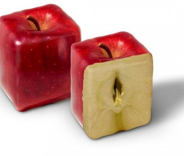 Top 10 Strange, Rare and Unusual Apples
