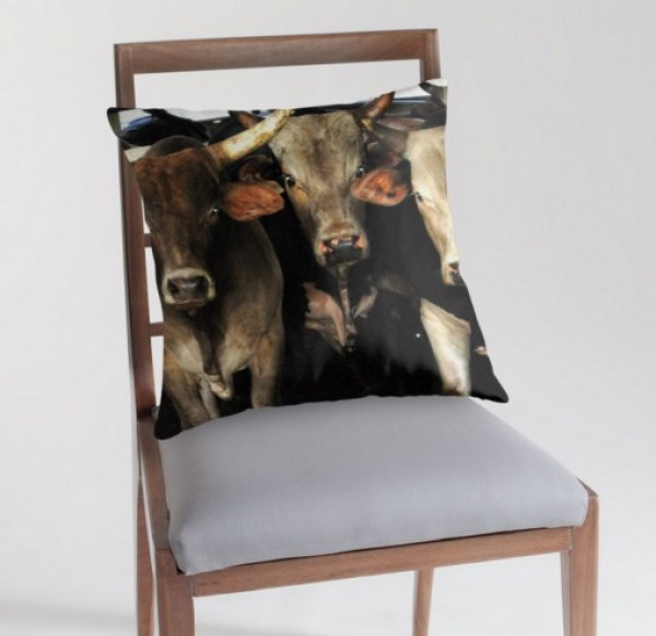 Ten Strange and Unusual Bull Gift Ideas for People Who Love Bulls!