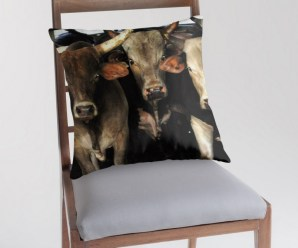 Top 10 Strange and Unusual Bull Gift Ideas