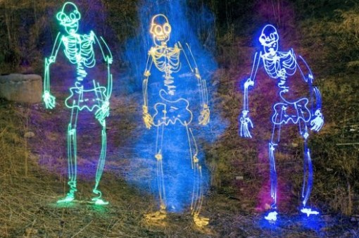 Top 10 Best Light Painted Skeletons