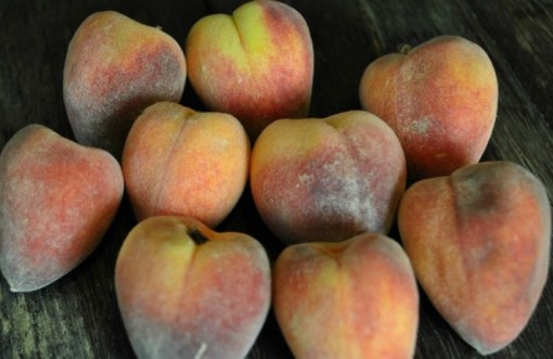 Top 10 Strange, Rare and Unusual Peaches