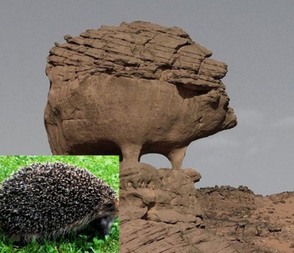 Top 10 Amazing Animal Shaped Rock Formations