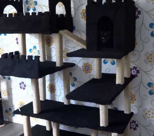 Top 10 Amazing and Unusual Cat Towers