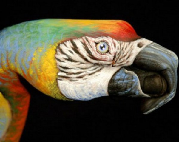 Top 10 Amazing Animal Hand Paintings