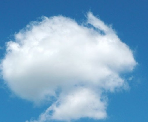 Cloud Formation That Looks Just Like a Rabbit