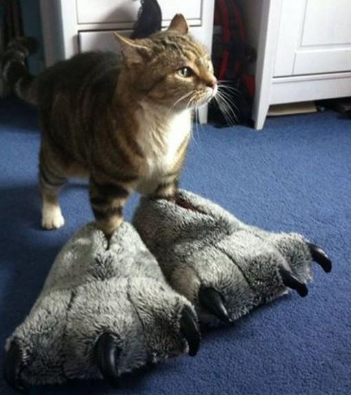 Top 10 Prehistoric Dinosaur Cats (Dinocats)