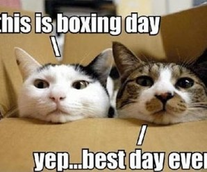 Top 10 Things To Do On Boxing Day