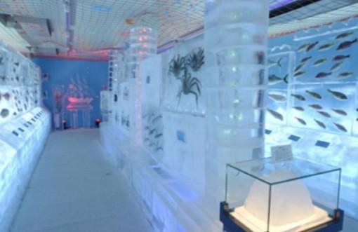 Ice Aquarium
