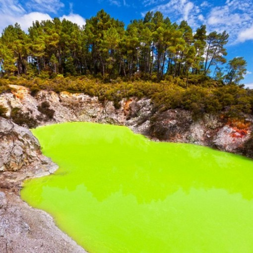 Top 10 Weird And Unusual Tourist Attractions In New Zealand