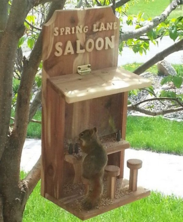 Bar Squirrel Feeder