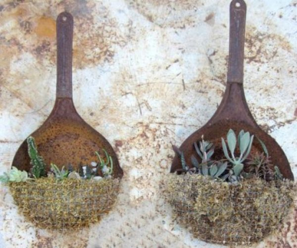 Frying Pan / Skillet Transformed Into Planters