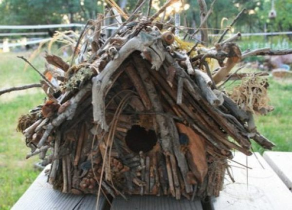 Twigs and Branches Transformed Into a Bird House