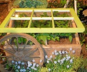 Top 10 Ways to Recycle and Transform Old Windows
