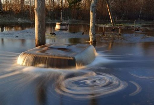 Top 10 Weird And Unusual Tourist Attractions In Estonia