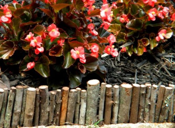 TwigsTransformed Into Garden Edging