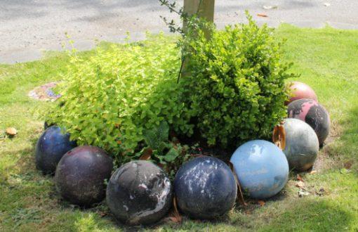 Bowling Balls Transformed Into Garden Edging