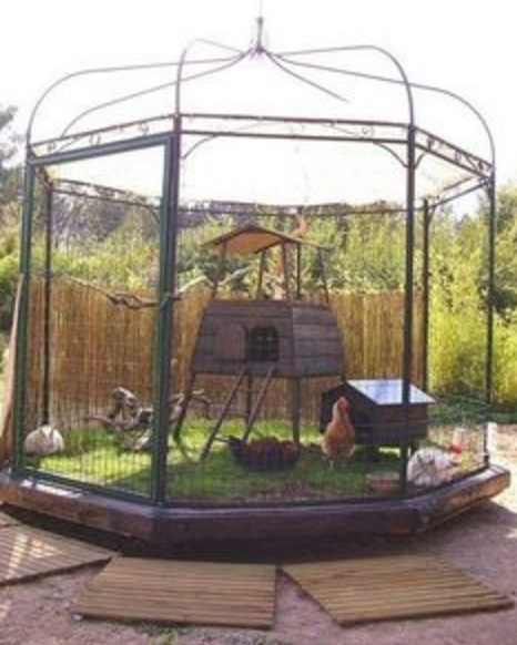 Chicken Coop Made From an Aviary