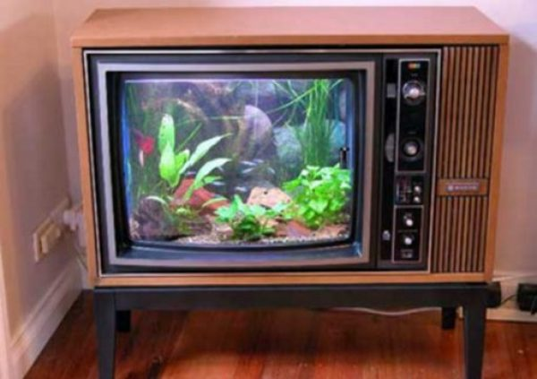 Old TV Turned Into an Aquarium