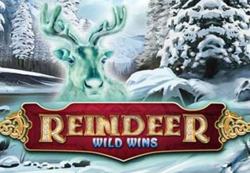 Reindeer Wild Wins