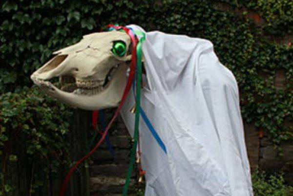 Welsh Christmas Tradition - The Mari Lwyd